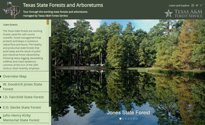 State Forests and Arboretums